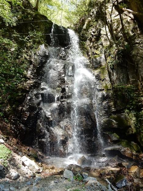 写真: 瀬戸かつら大滝