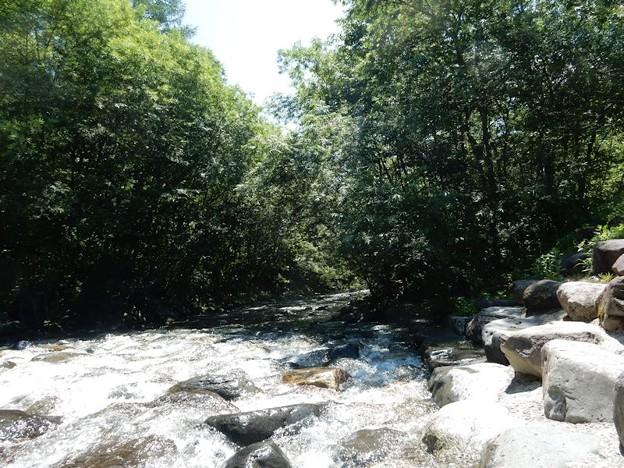 写真: 木曽川源流親水公園 誰もいないけど