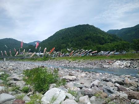 鯉のぼる遠山川