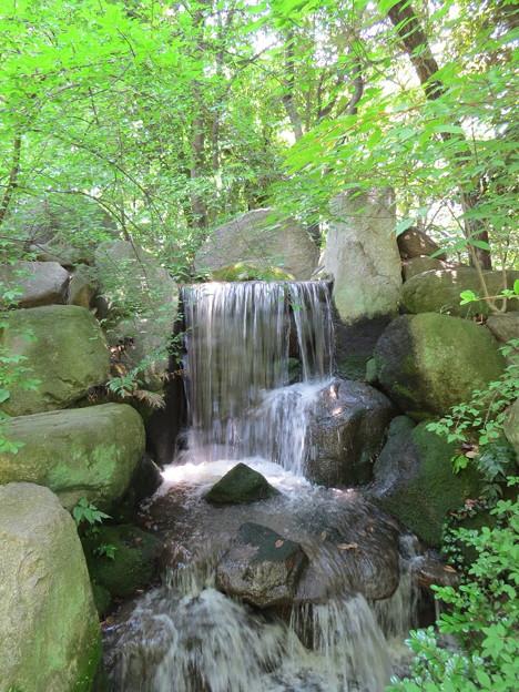 池泉・庭園奥の3段滝