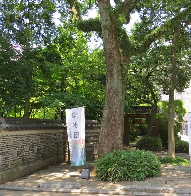 日本庭園・楽水園入り口