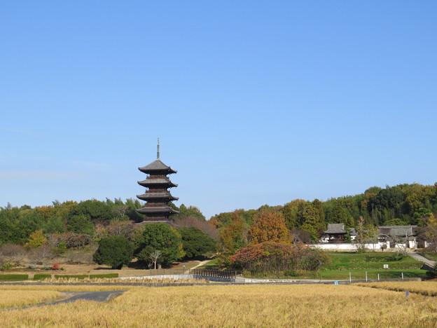 国分寺の五重塔