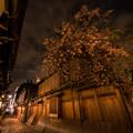 写真: 祇園の小道で