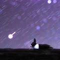 うさぎが見ていた星の夢