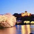 写真: 偽京都