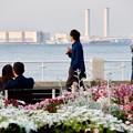 写真: 港の3組
