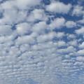 空や風景の写真
