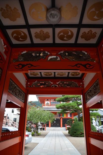 大円寺山門を通って