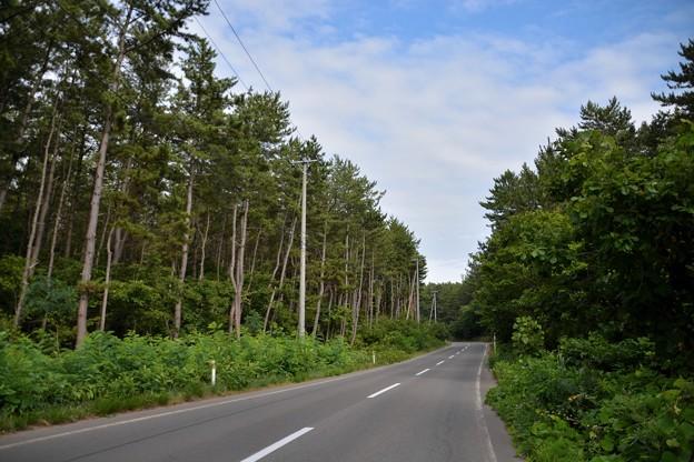 高山稲荷神社へ向かう道