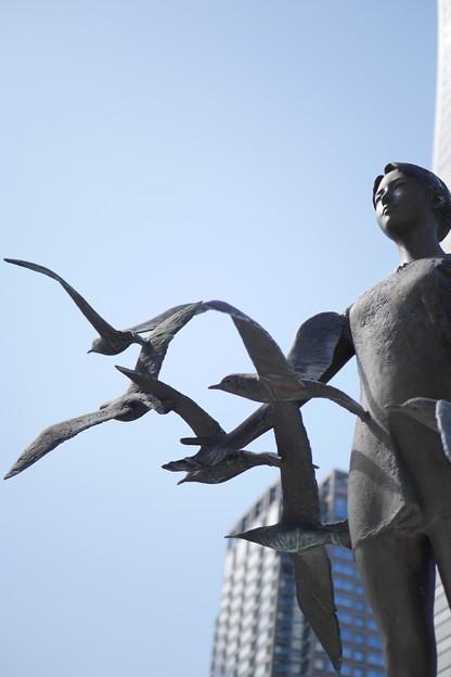 海鳥達の風