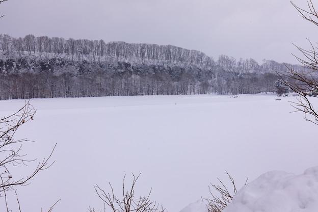 車窓から見た冬北海道の大地 1