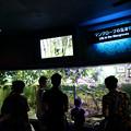 美ら海水族館(2018/05/01)