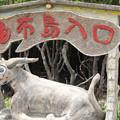 Photos: 由布島水牛車乗り場(2019/07/31 西表島)