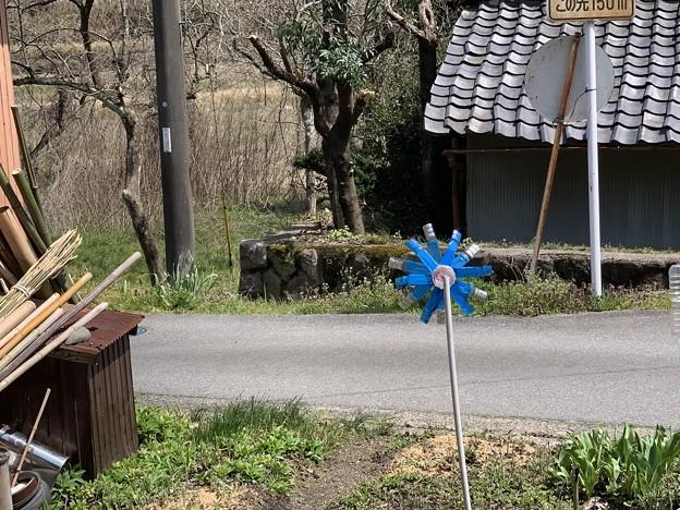 Photos: 畑でまわってるアレ