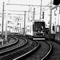 Photos: 都電荒川線 S字カーブ
