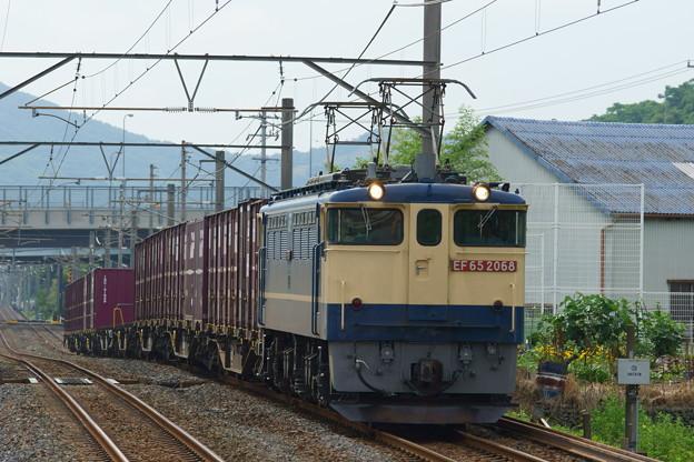 EF65国鉄色