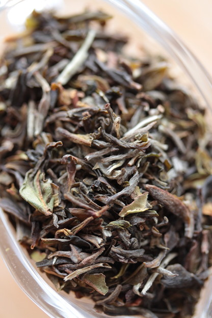 MARIAGE FRERES DARJEELING AMBOOTIA 茶葉