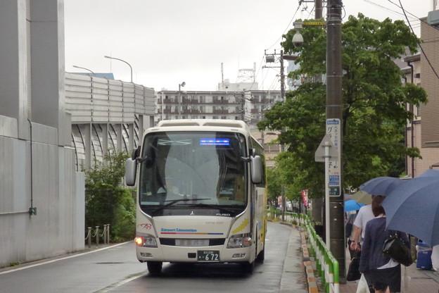 雨の中のリムジンバスと「傘の花」