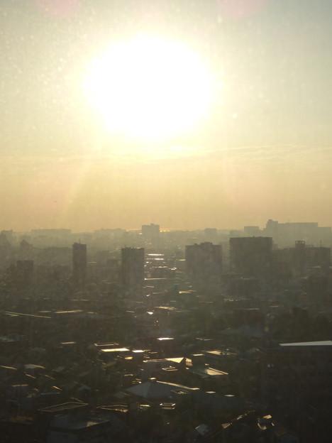 Photos: 窓越しの朝景…一日の始まり