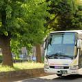 「終点近くの一里塚」を走る夜行バス
