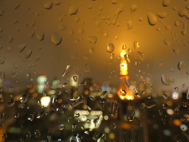 Photos: 雨粒模様…2019.6.10夜