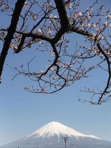 今日の富士山(2018/3/25)
