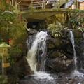 写真: お不動さんの滝