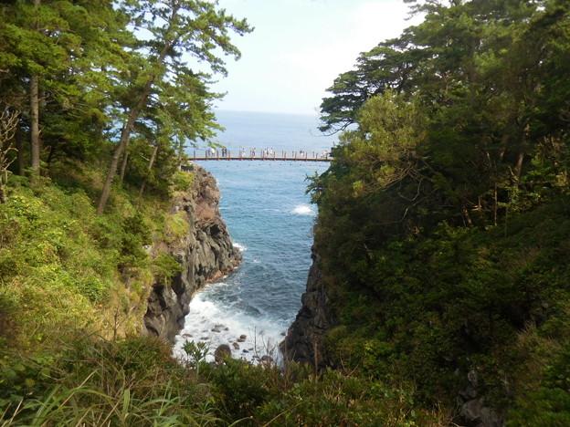 遥かに吊り橋