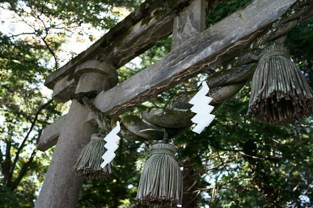 須須神社 鳥居と注連縄