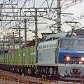 Photos: EF 200-901 試運転列車