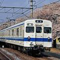 Photos: 5157 20050410