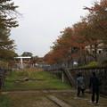 Photos: 蹴上インクライン10