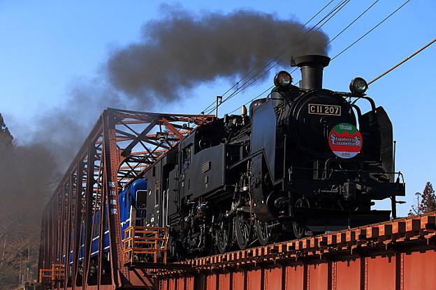 Strawberry Locomotive SL大樹