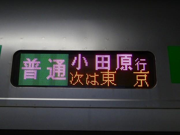 普通 小田原