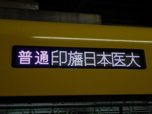普通 印旛日本医大
