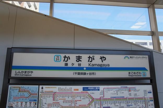 TD31 鎌ヶ谷