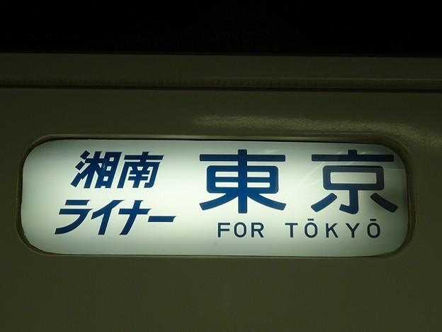 湘南ライナー 東京