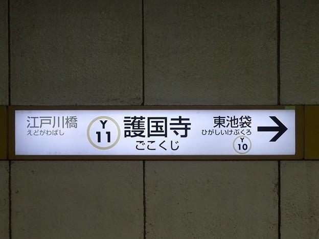 Y11 護国寺