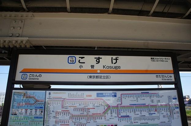 TS10 小菅