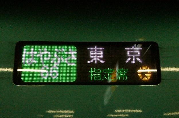 はやぶさ 東京