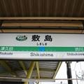 Photos: 敷島