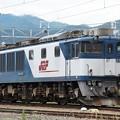 Photos: EF64-1009
