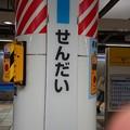 Photos: せんだい