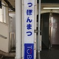 Photos: いっぽんまつ