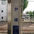 Photos: わかば