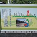Photos: 小塙