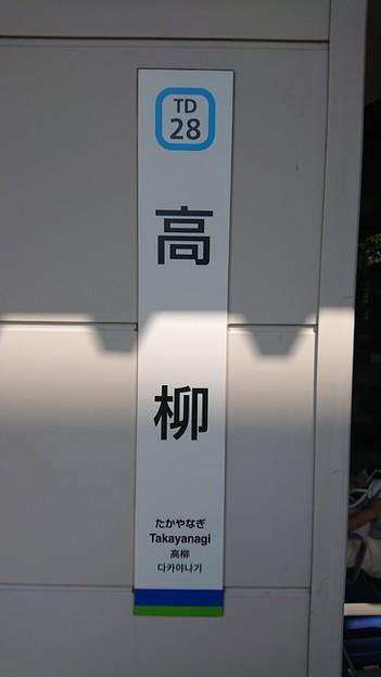 TD28 高柳