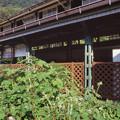 Photos: 000033_20130814_叡山電鉄_八瀬比叡山口