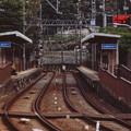 Photos: 000190_20131102_京阪電気鉄道_大谷