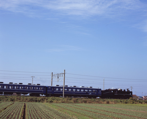 Photos: 000202_20131117_JR田村-長浜